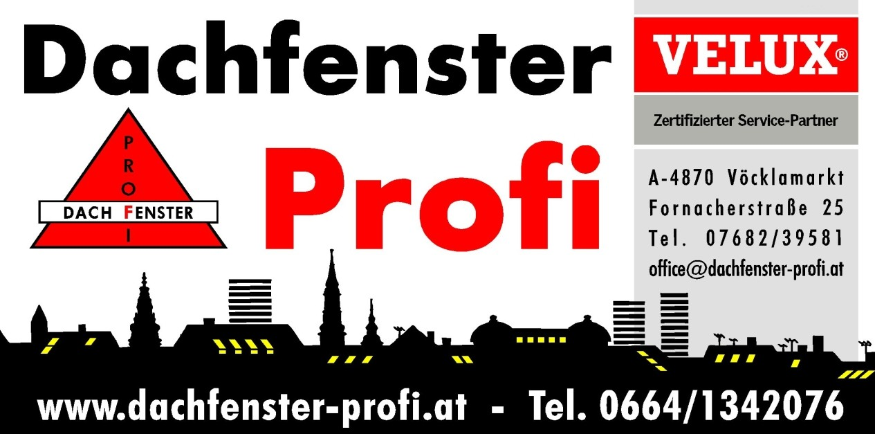 Dachfenster-Profi Logo